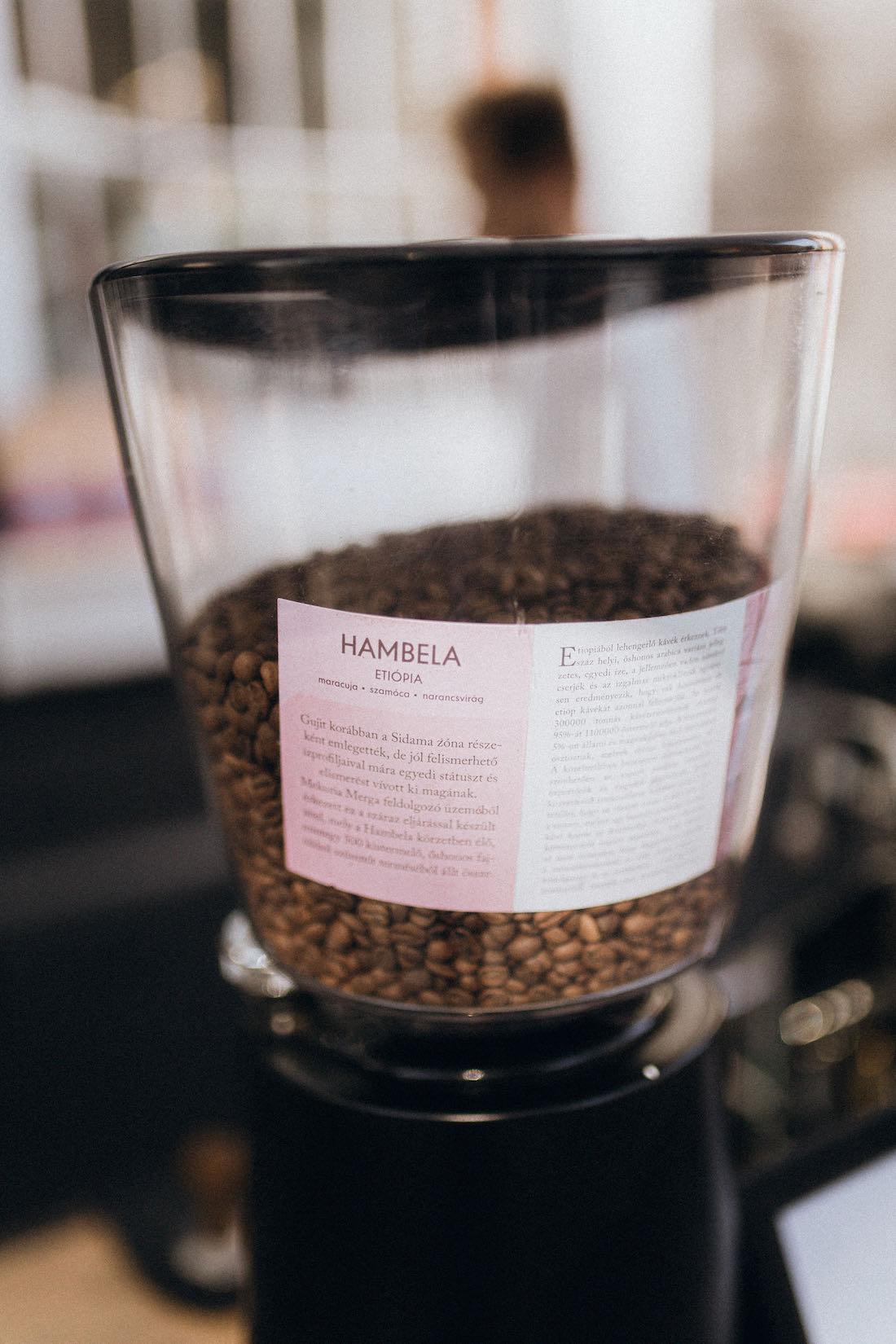 Casino Mocca Hambela etióp világos pörkölésű kávé